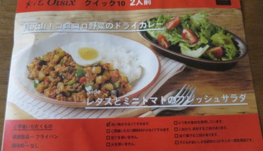 Kit Oisix  コロコロ野菜のドライカレーとフレッシュサラダ